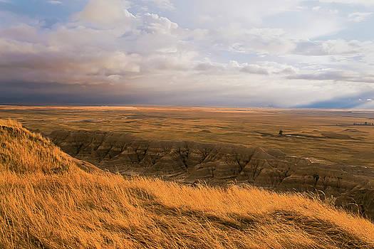 Prairie Wind by Ron  McGinnis