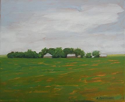 Prairies 3 by Liliane Fournier