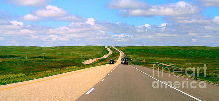 Prairies by Elfriede Fulda