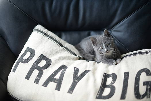 Pray Big by Linda Mishler