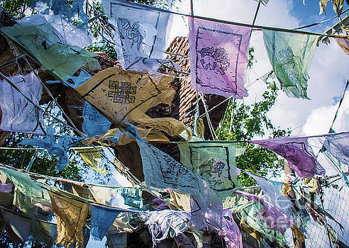 Prayer Flags by Lisa L Silva
