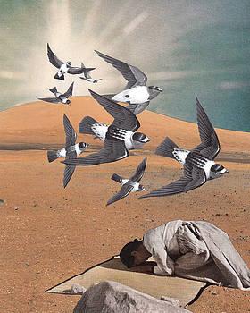 Prayer Flight by Starcrow Astrology