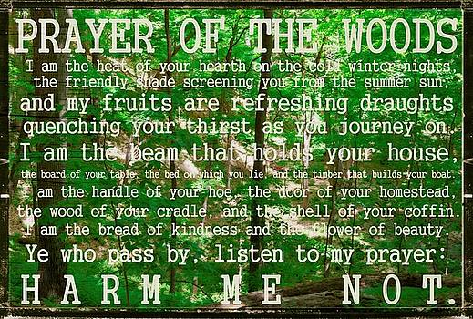 Michelle Calkins - Prayer of the Woods 2.0
