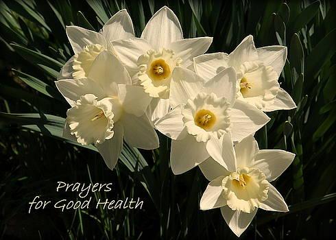 Prayers for Good Health by Rosanne Jordan