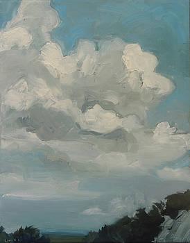 Precipice by Laura Wilson