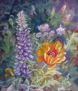 Precocious Poppy by Carole Haslock