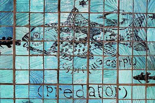 Stephen Mitchell - Predatile