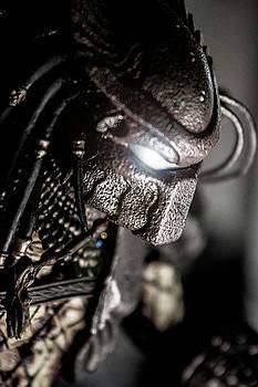 Predator by David Doyle
