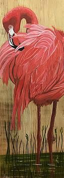 Preening Flamingo by Debbie LaFrance