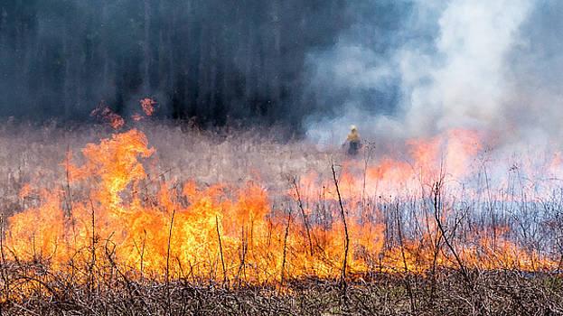 Steven Ralser - Prescribed Burn - UW Arboretum - Madison - Wisconsin