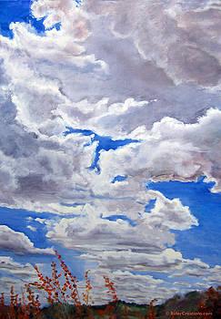 Preserve Sky by CJ  Rider