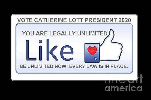 President 2020 by Catherine Lott