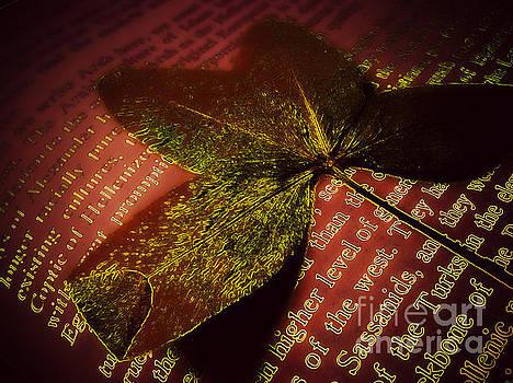 Pressed Leaf by Eve Penman