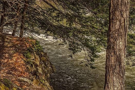 Robert Hayes - Presumpscot River, Maine 04