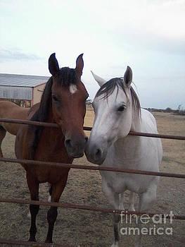 Pretty Horses  by Ruth Housley