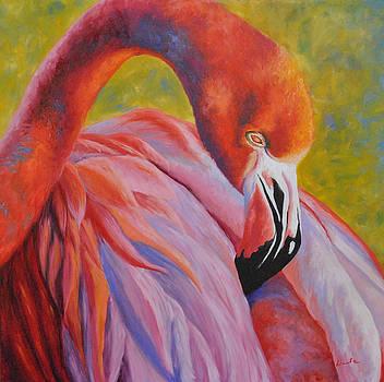 Pretty in Pink by Darla Brock