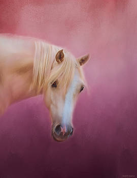 Michelle Wrighton - Pretty In Pink - Palomino Pony