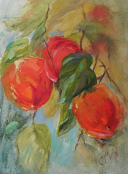 Pretty Persimmons 2 by Jeri McDonald