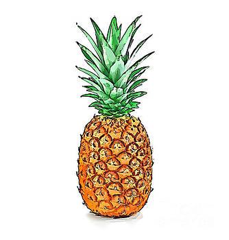 Pretty Pineapple II by Jennifer Capo