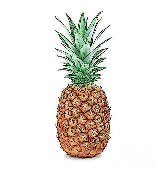 Pretty Pineapple by Jennifer Capo