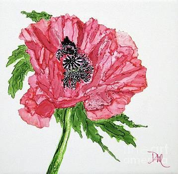 Pretty Poppy by Diane Marcotte