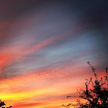 Pretty Sky ⛅ by Elizabeth Dominguez