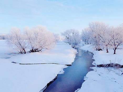 Pretty Winter Stream by Lori Frisch