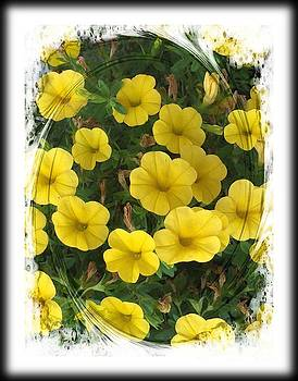 Pretty Yellow Flowers by Barbara Griffin