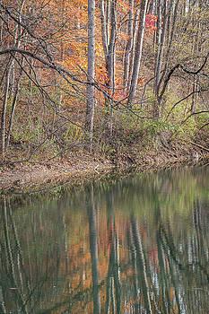 Prickett Creek Reflections by Steve Konya II