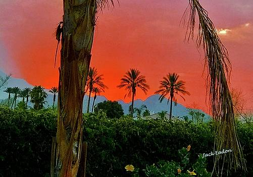 Primary Desert Sunset by Jack Eadon