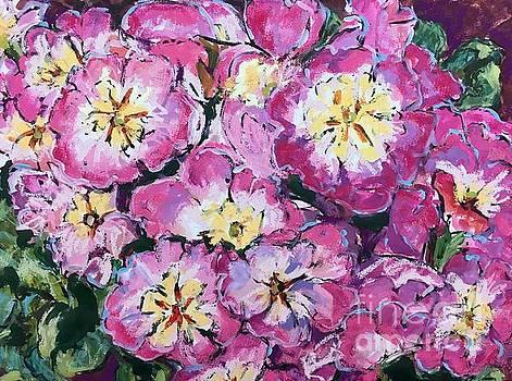 Primrose by Lynne Schulte