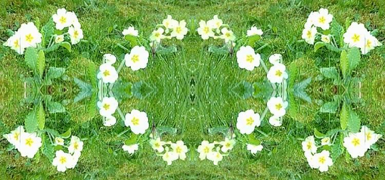Primrose Pattern by Julia Woodman