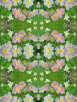 Primula Pattern 1 DOuble by Julia Woodman