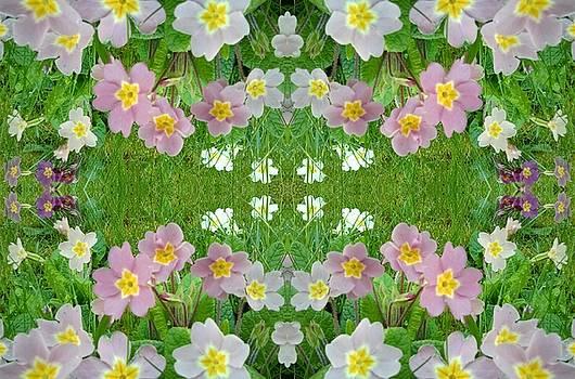 Primula Pattern 1 by Julia Woodman