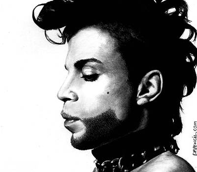 Prince by Rick Fortson