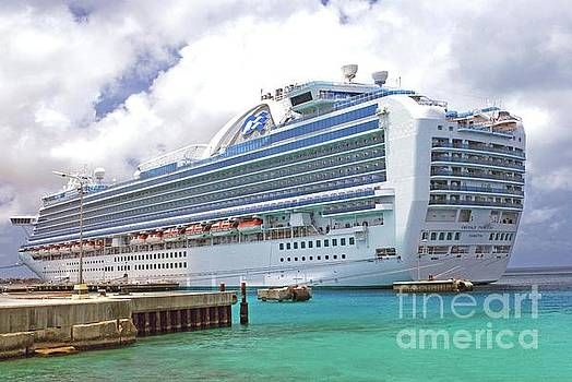 Gary Wonning - Princess Cruise Ship