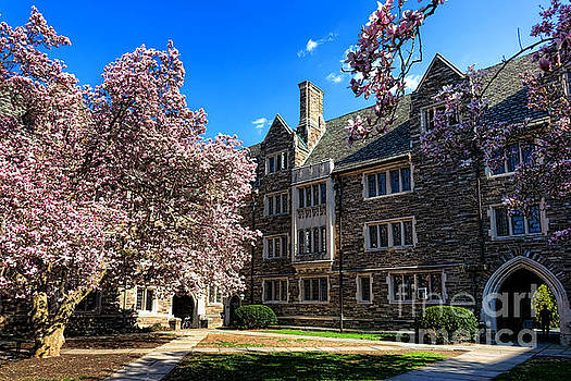 Princeton University Pyne Hall Courtyard by Olivier Le Queinec