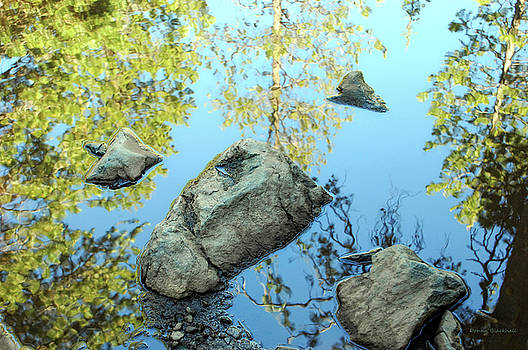 Prisoner Of The Lake by Donna Blackhall