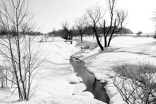 Pristine Winter Decor by Cathy Beharriell