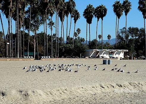Private Beach by Rich Neuman