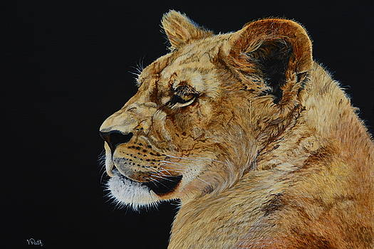 Profile of a Lioness by Vicky Path