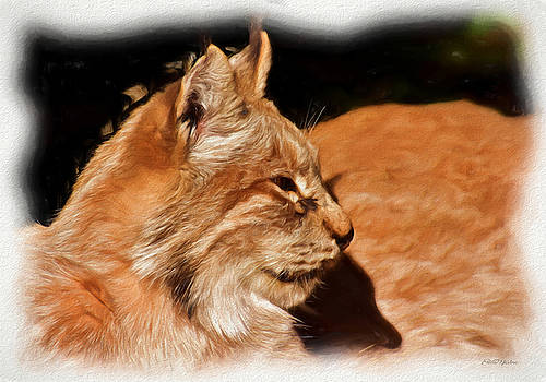 Profile of a Lynx - Painting by Ericamaxine Price