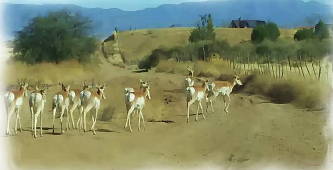 Pronghorn Antelope Herd Arizona - Painted by Ericamaxine Price
