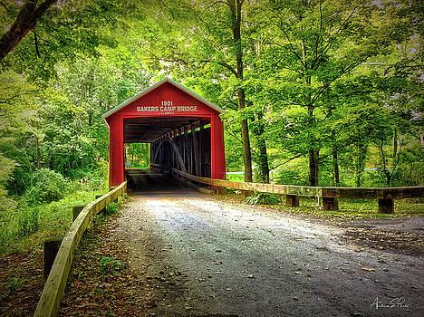 Protected Crossing in Summer by Andrea Platt