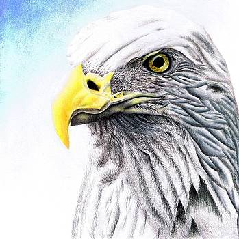 Proud Eagle by Brandon Sharp