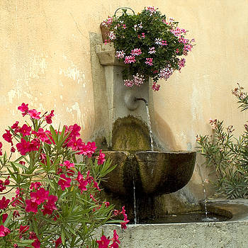 Provence Fountain by Christopher Brown
