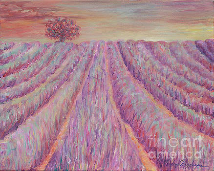 Provence in Pink by Nadine Rippelmeyer
