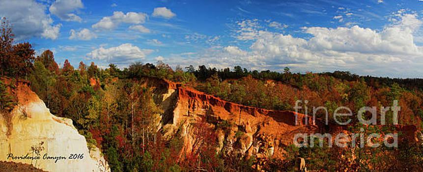 Barbara Bowen - Providence Canyon Panorama