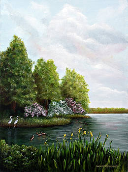 Providence Lakes by Dorothy Riley