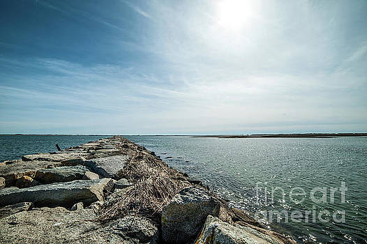 Provincetown Breakwater by Michael James